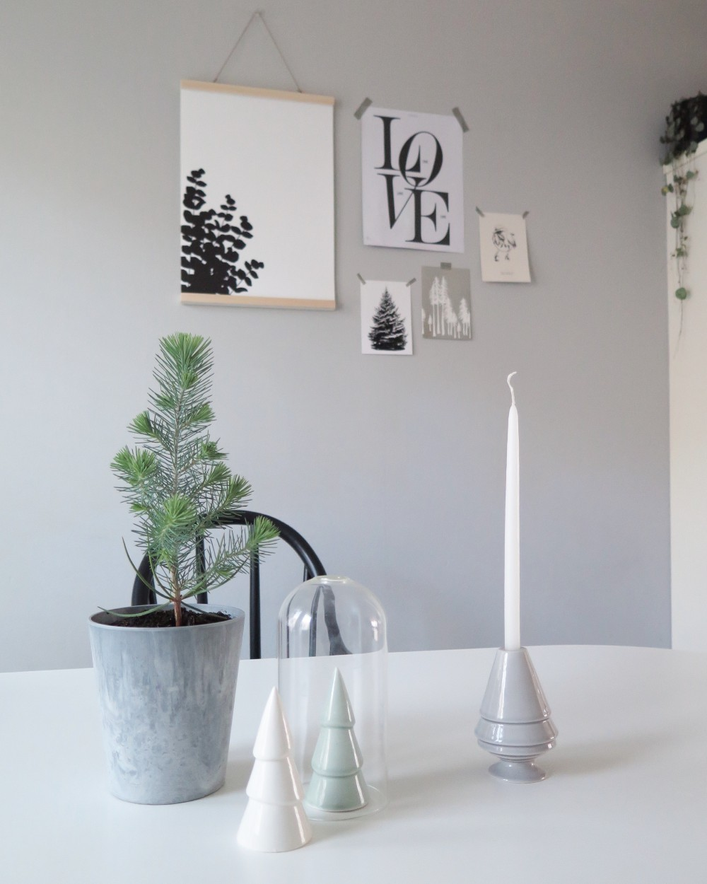 Eucalyptus poster Ingrid Petrie Design
